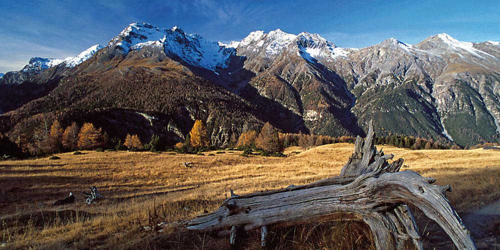 Alpen Val Trupchun Schweizerischen Nationalpark ©Schweizerischer Nationalpark SNP