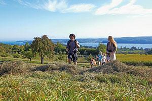 Familie wandert am Aussichtspunkt Torkelbühl mit Blick auf den Bodensee