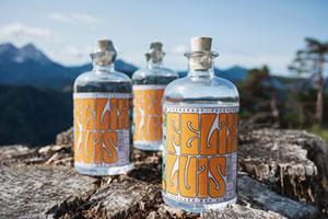 Gin Flaschen vor Alpen Bergkulisse