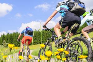 Zwei Radfahrer fahren durch blühende Landschaft