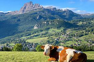 Alpen Italien Cortina d'Ampezzo Urlaub